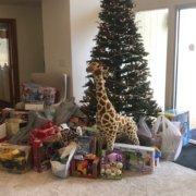 Toys for Tots Donated Toys